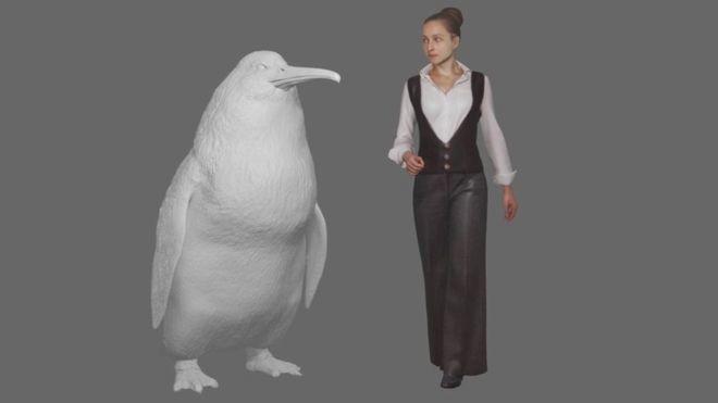 Los fósiles de este pingüino extinto revelan que tenía el tamaño de un ser humano