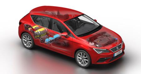 SEAT León TGI EVO 2019, precios