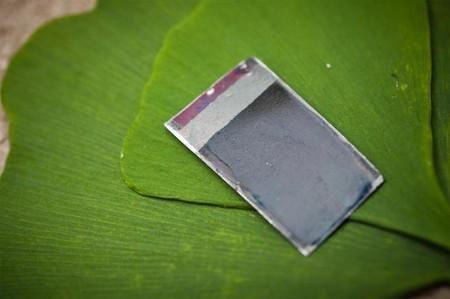 Esta 'hoja biónica' forma abono para su planta