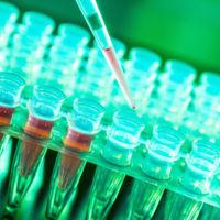Este líquido inyectable ilumina las células cancerosas
