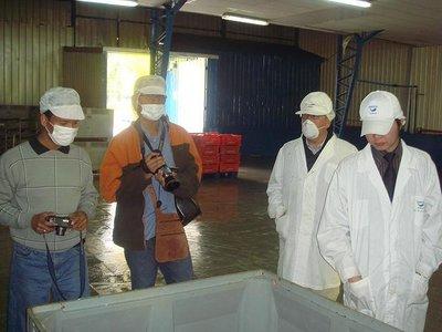 Inspecciones de trabajo: funciones de la inspección