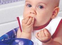 Introducir la carne en la dieta del bebé