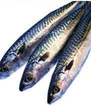 Elegir bien en la pescadería