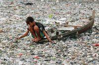 Destrucción del Medio Ambiente en estado puro