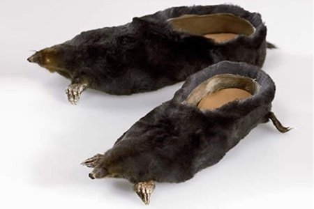 crazy-shoes-mole-slipper.jpg