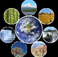 Ahora, a por las 7 Maravillas Naturales del Mundo: Natural7Wonders