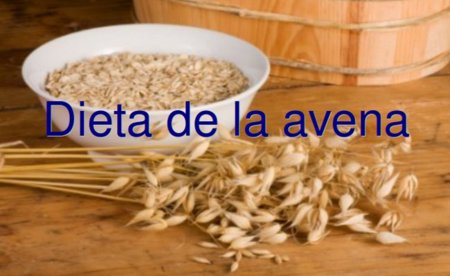 Dieta de la avena. Análisis de dietas milagro (XXI)