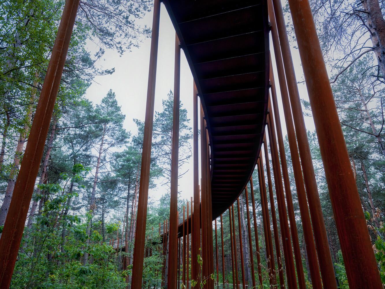 Foto de Puente de Hechtel-Eksel (2/6)