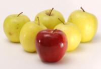 La organización puede ayudar a perder peso