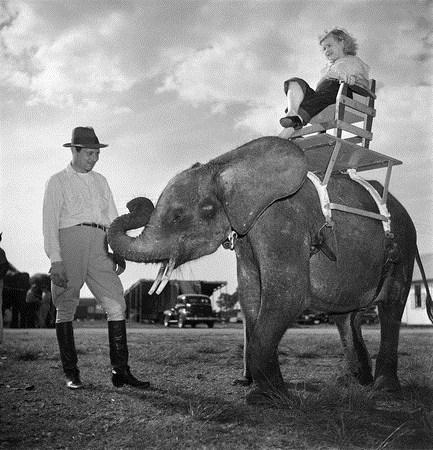 Foto de Stanley Kubrick, un mito del cine fotografiando el mundo del Circo (6/8)