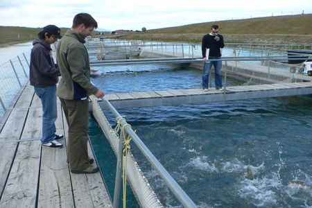 salmoncomiendo