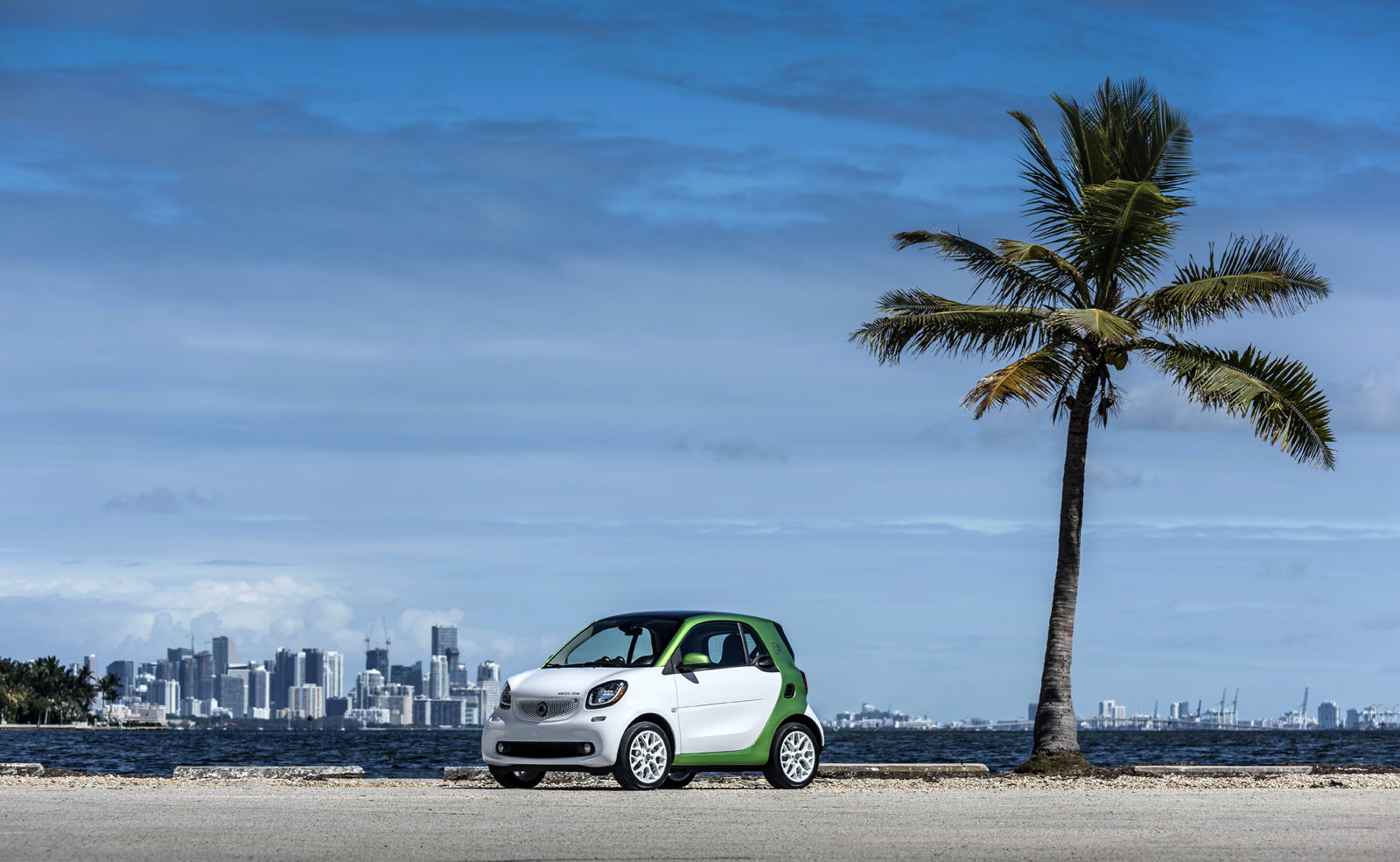 Foto de smart fortwo Electric Drive, toma de contacto (144/313)