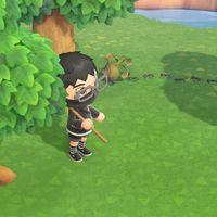 Animal Crossing: New Horizons: cómo cazar hormigas y moscas