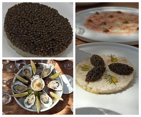 Tartar De Cigalas Y Caviar Ostras Carpaccio De Gamba Roja Y Ensaladilla De Cangrejo Real Con Caviar
