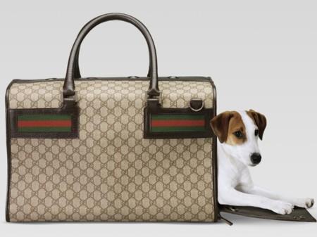11 complementos de moda que debe tener tu perro si quieres que sea el más fashion del metro