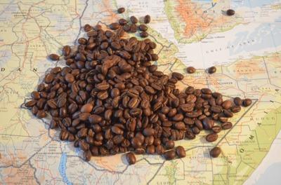 Toma café como nunca lo has hecho en la tierra donde nació por primera vez