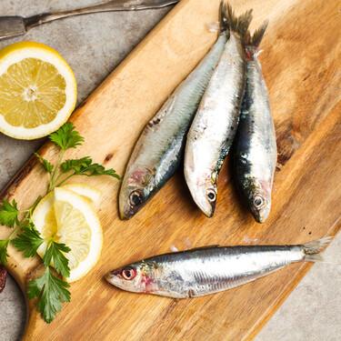 El tamaño de la sardina sí importa: pequeña o grande y cómo la prefieren los chefs en función de la receta