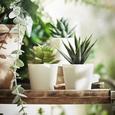 Sin excusas para no tener un rincón verde en casa, con las plantas artificiales más vendidas de Ikea