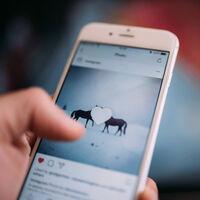 No necesitas muchos 'likes' (ni que nadie vea tus fotos) para poder considerarte buen fotógrafo