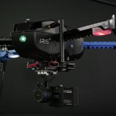 Foto 3 de 8 de la galería 3d-robotic-iris en Xataka