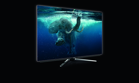 Gr Oled Tv 55vlo9890 Left Elefant