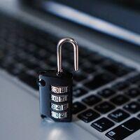 Día Internacional de la Seguridad de la Información: una de cada cuatro empresas no cuenta con una estrategia de seguridad informática