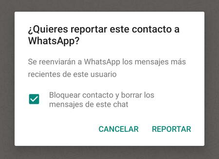 Reportar Whatsapp