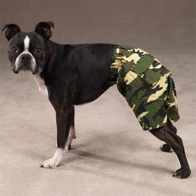 Pantalón de camuflaje para mascotas