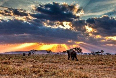 Visado para viajar a Tanzania e impuestos de salida
