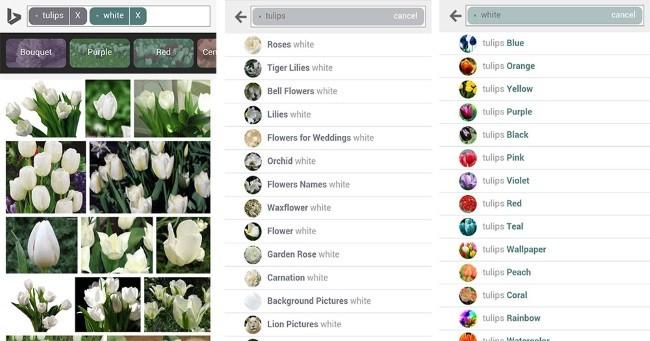 Bing Imagenes Navegador