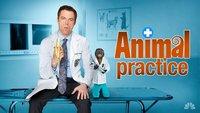 NBC cancela 'Animal Practice' y estrena 'Whitney' en su lugar