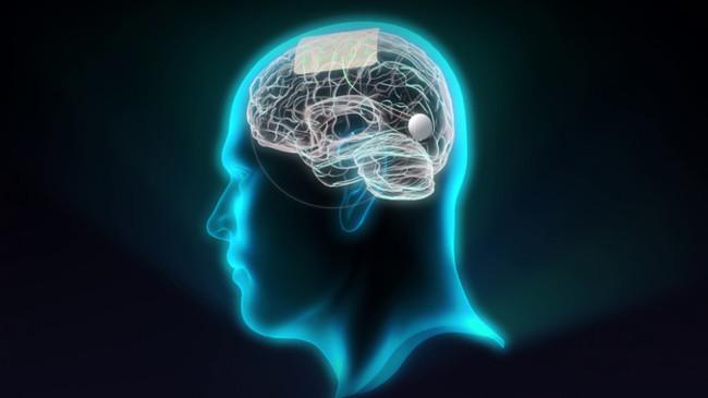 Sensores De Grafeno Para Interactuar Con El Cerebro Image 380