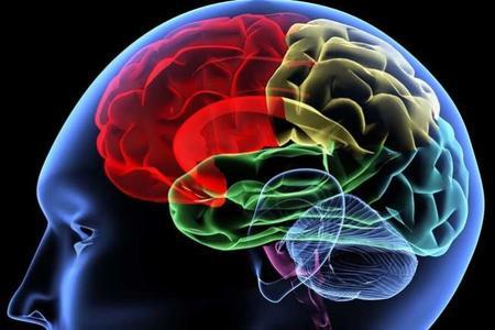 La ciencia lo confirma: nuestro cerebro se desarrolla más con la música HD que con los MP3 de baja calidad