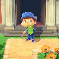 Animal Crossing: New Horizons: lista con todos los bichos de julio