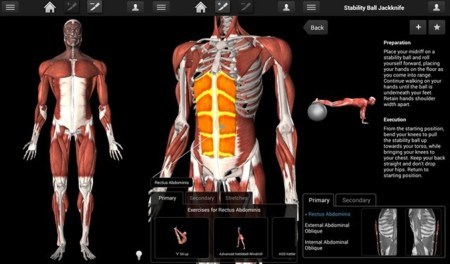 imuscle 2 app