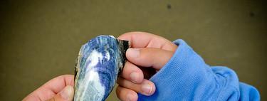 Tres ideas para que tu hijo aprenda más y mejor