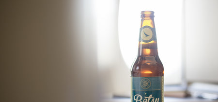 Crean una cerveza artesanal especial para tomar a bordo del avión