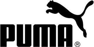 Puma se llevó el mundial de calle