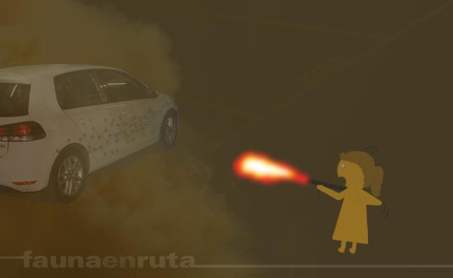 Fauna en ruta: Señoras que te destrozan el coche y se van