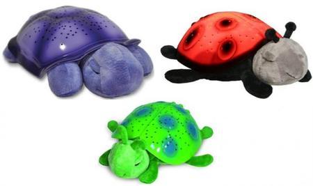 Originales planetarios con forma de mariquita y tortuga