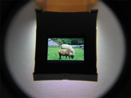 Epson saca un panel LCD especial para visores electrónicos de cámaras