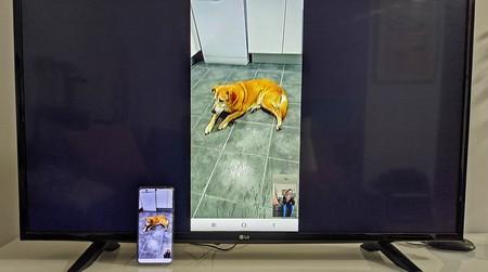 Cómo hacer videollamadas con el móvil y verlas en la televisión