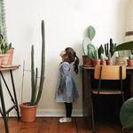 """A falta de jardín llegan los """"garden rooms"""" o el maximalismo vegetal, una de las tendencias que más triunfan en Pinterest"""