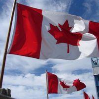 Canadá está buscando colombianos para cubrir vacantes de trabajo en los sectores de las TIC y videojuegos