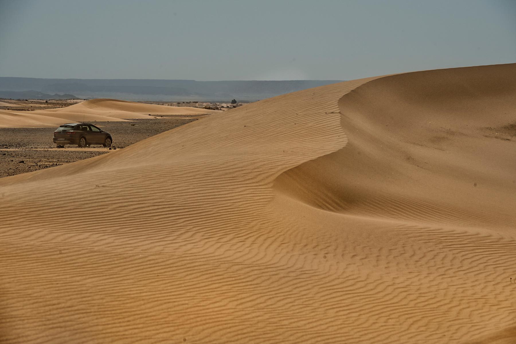 SEAT León X-Perience en el Sáhara