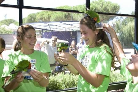 A partir del 11 abril comienzan los Campamentos de Semana Santa en Zoo Aquarium de Madrid