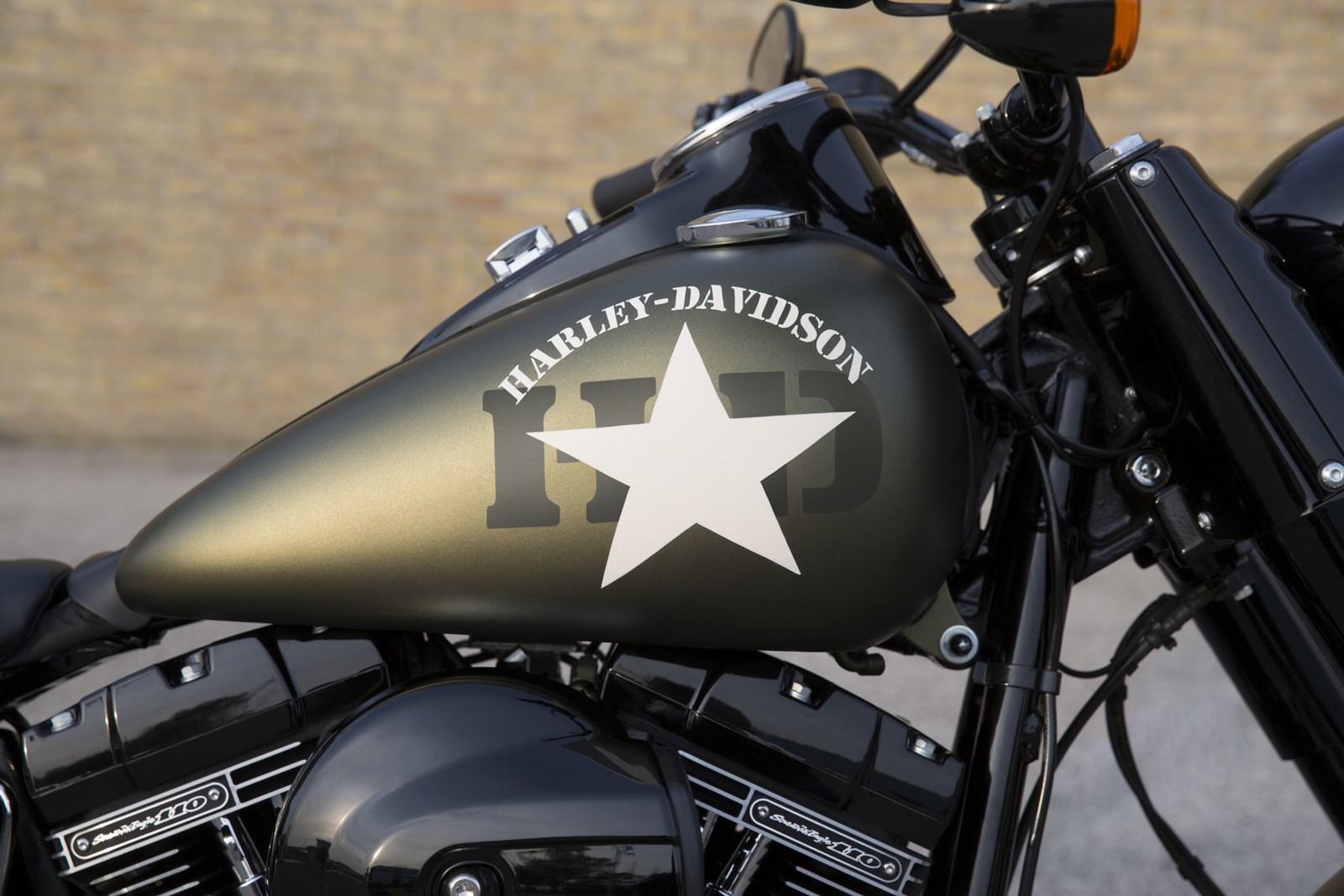 Foto de Gama Harley-Davidson 2016 (17/24)