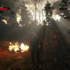 Foto 60 de 79 de la galería the-witcher-3-wild-hunt-ps4 en Xataka México