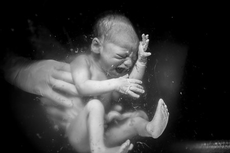 nacimiento-foto-ganadora