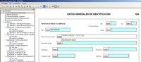 Depósito de cuentas 2008: descarga del software y confección de cuentas anuales